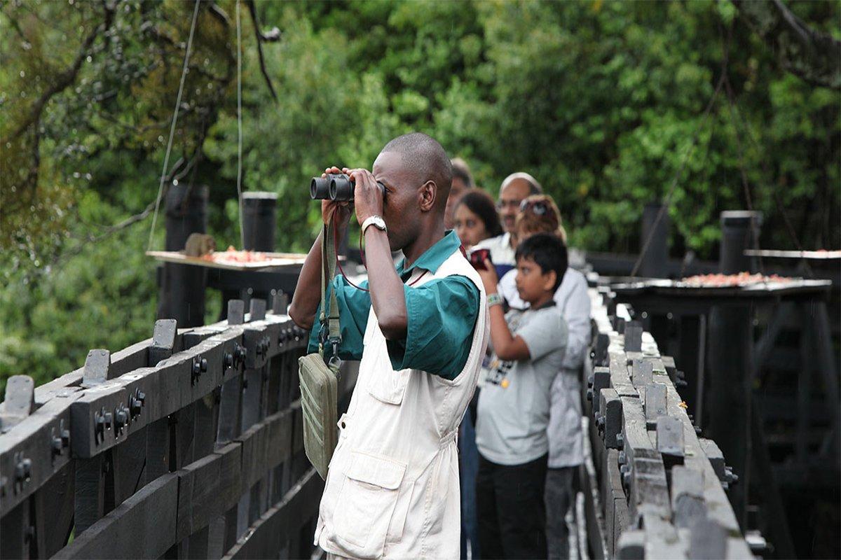 2 days tree lodge safari Kenya