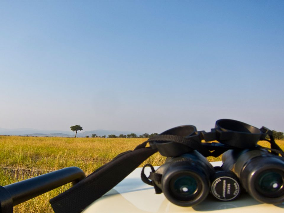 Best binoculars for a Uganda safari