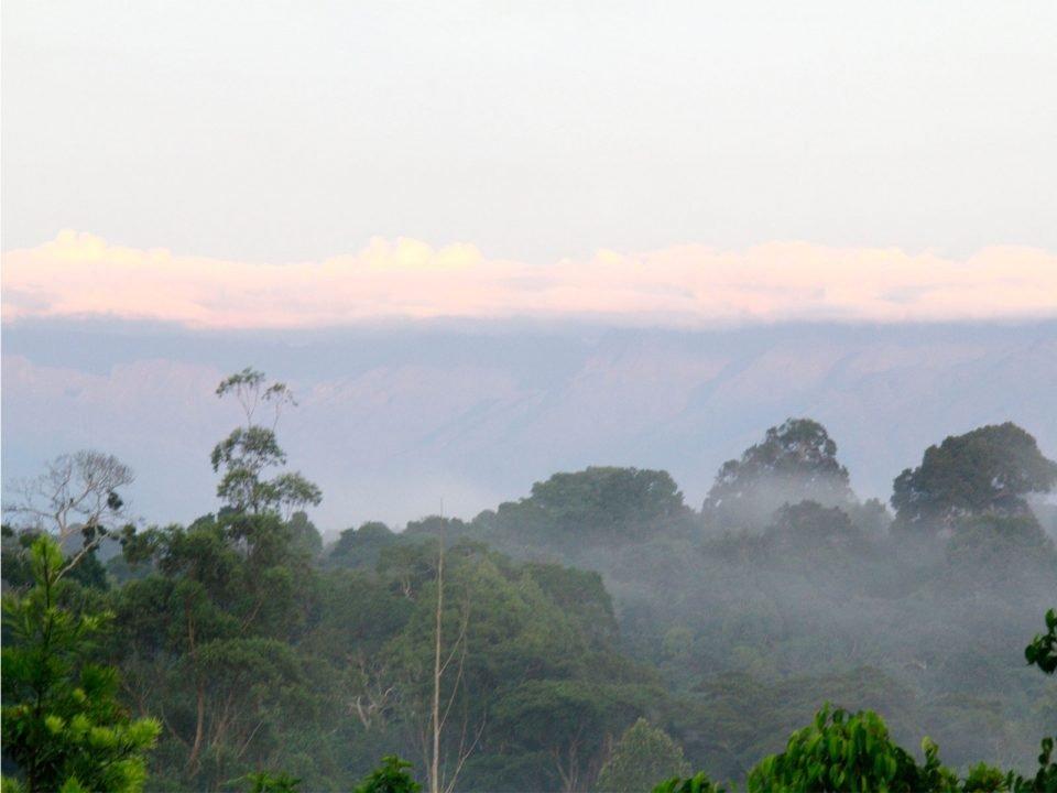 Best time to visit Kibale forest National Park