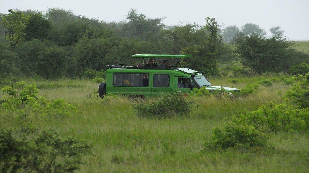 Booking safaris in Uganda