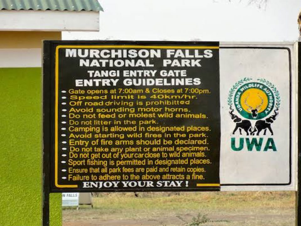 Entry fees to Murchison falls National park