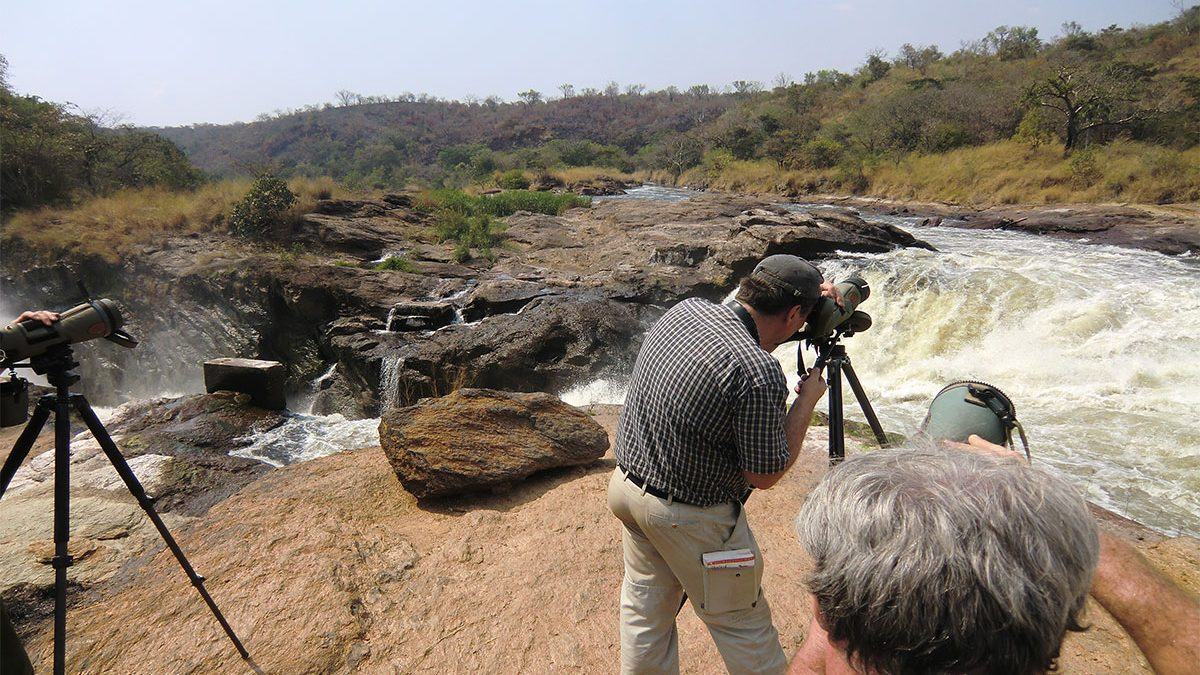 Filming in Murchison falls National park