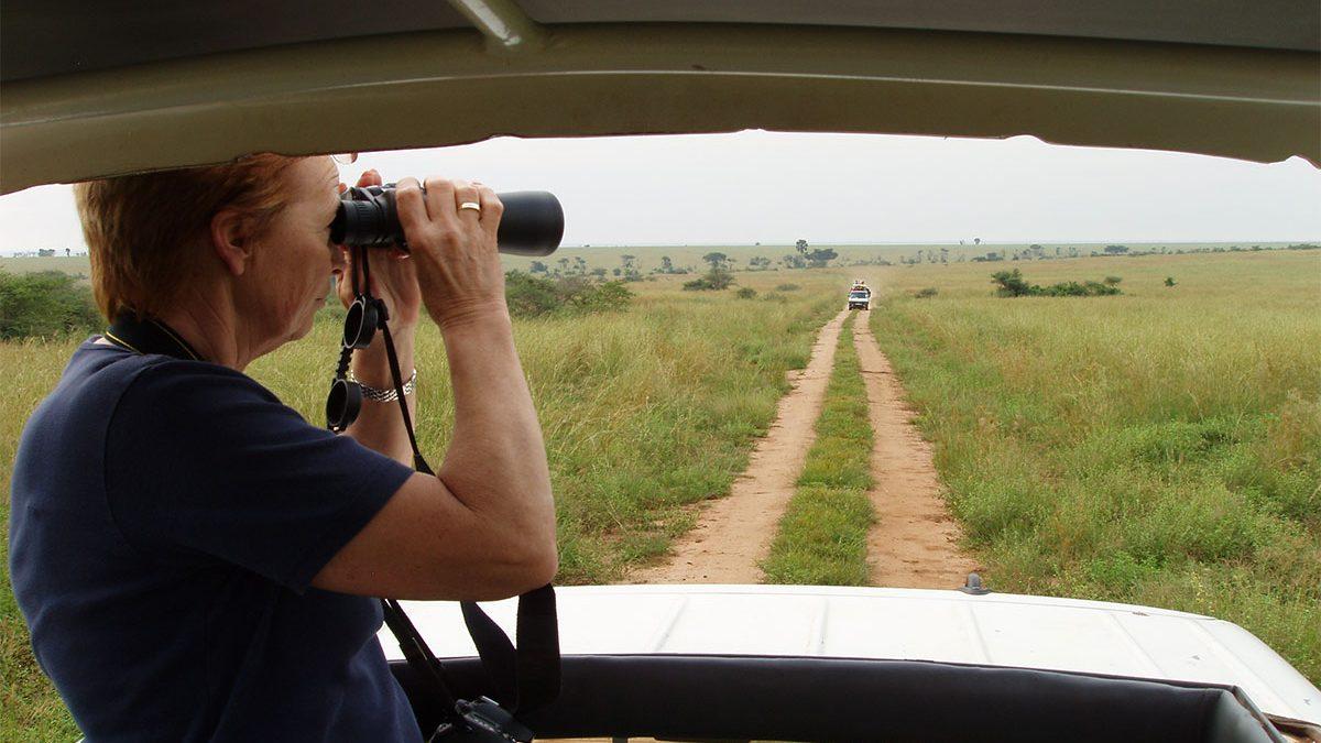 Game drives & game safaris