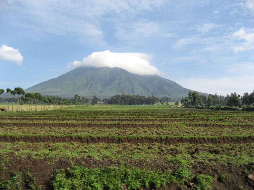 Hiking and climbing Rwanda's volcanoes
