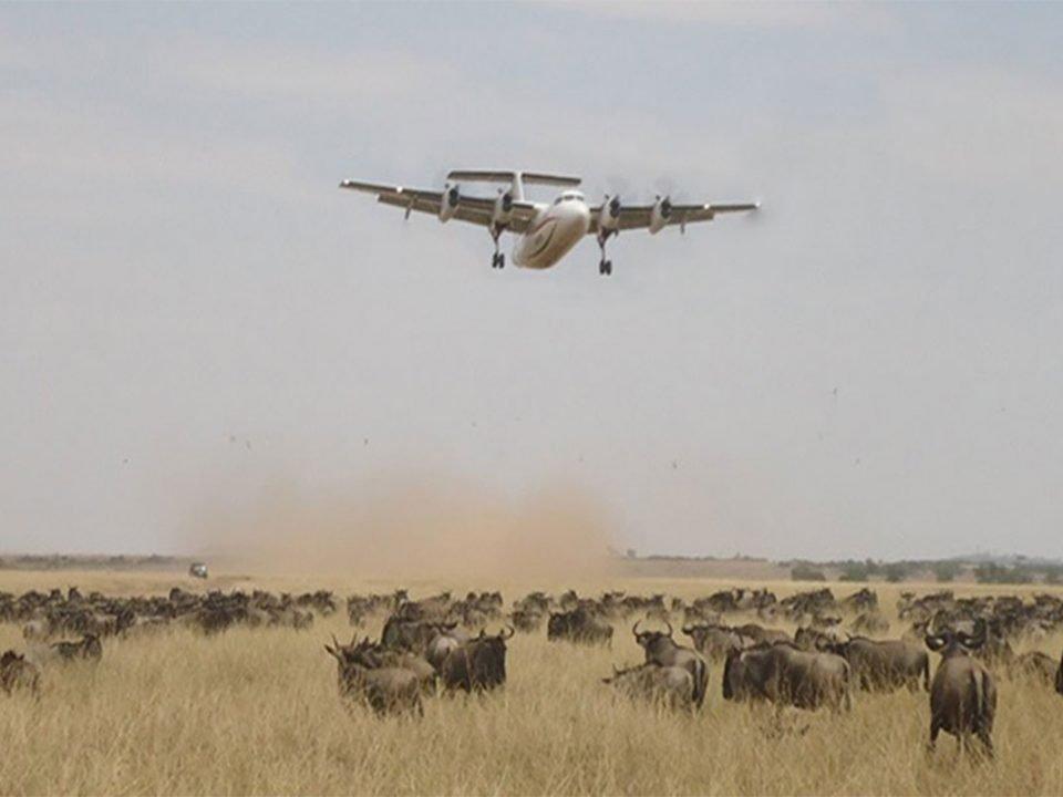 How to get to Masai Mara from Nairobi