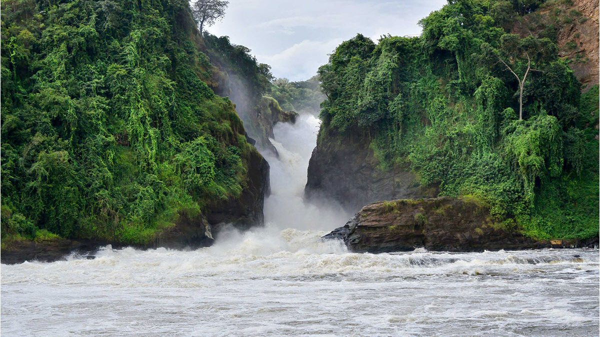 How to get to Murchison falls