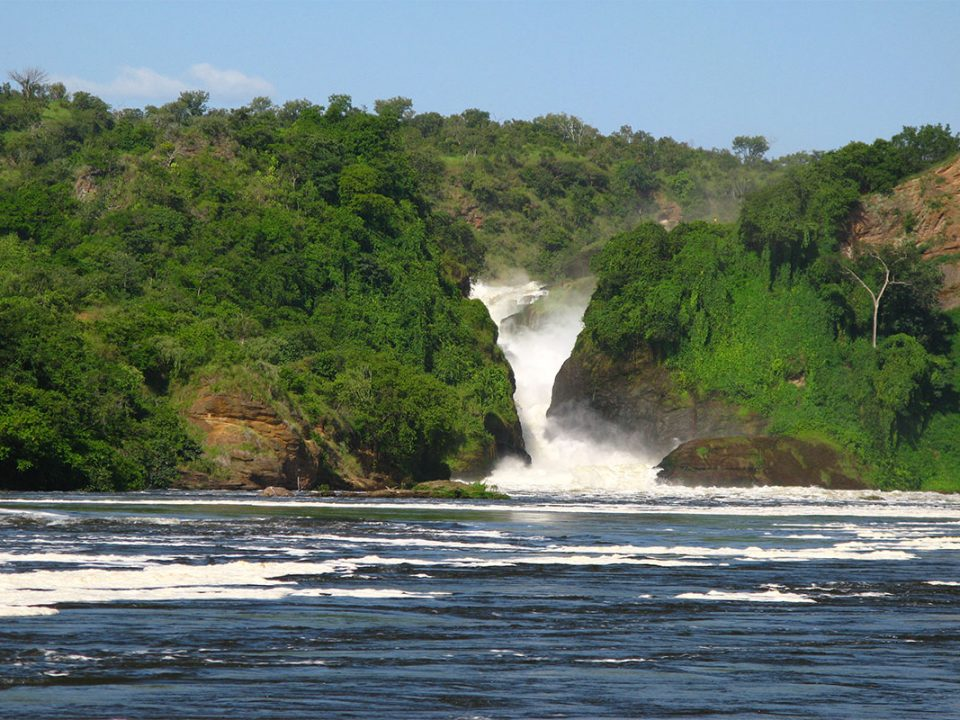 How to organise a fly-in safari to Murchison falls