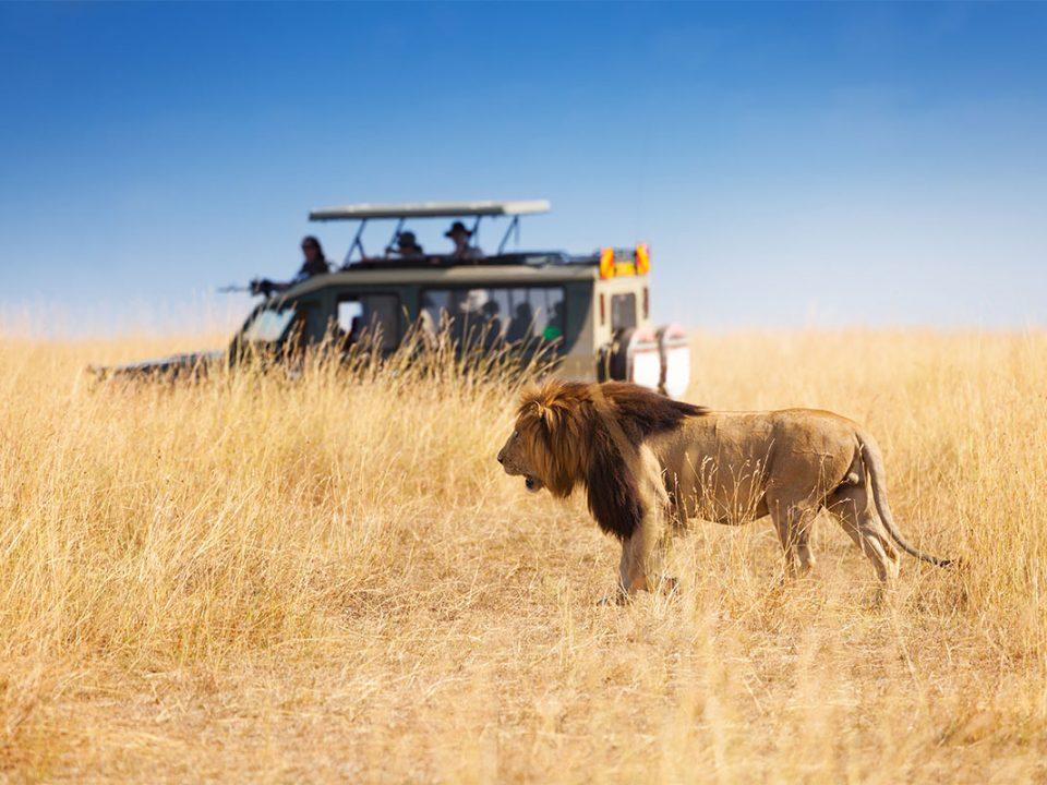 Is Masai Mara safe for tourists