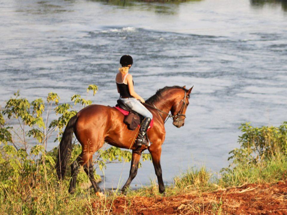 Jinja horse back safaris