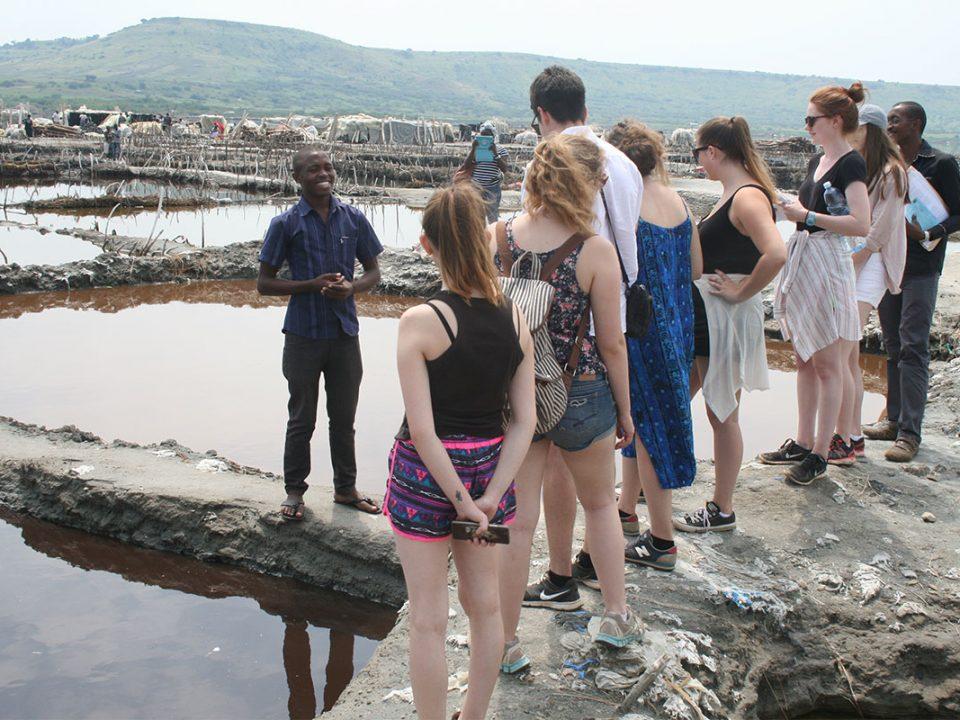 Lake katwe flamingos and salt mines