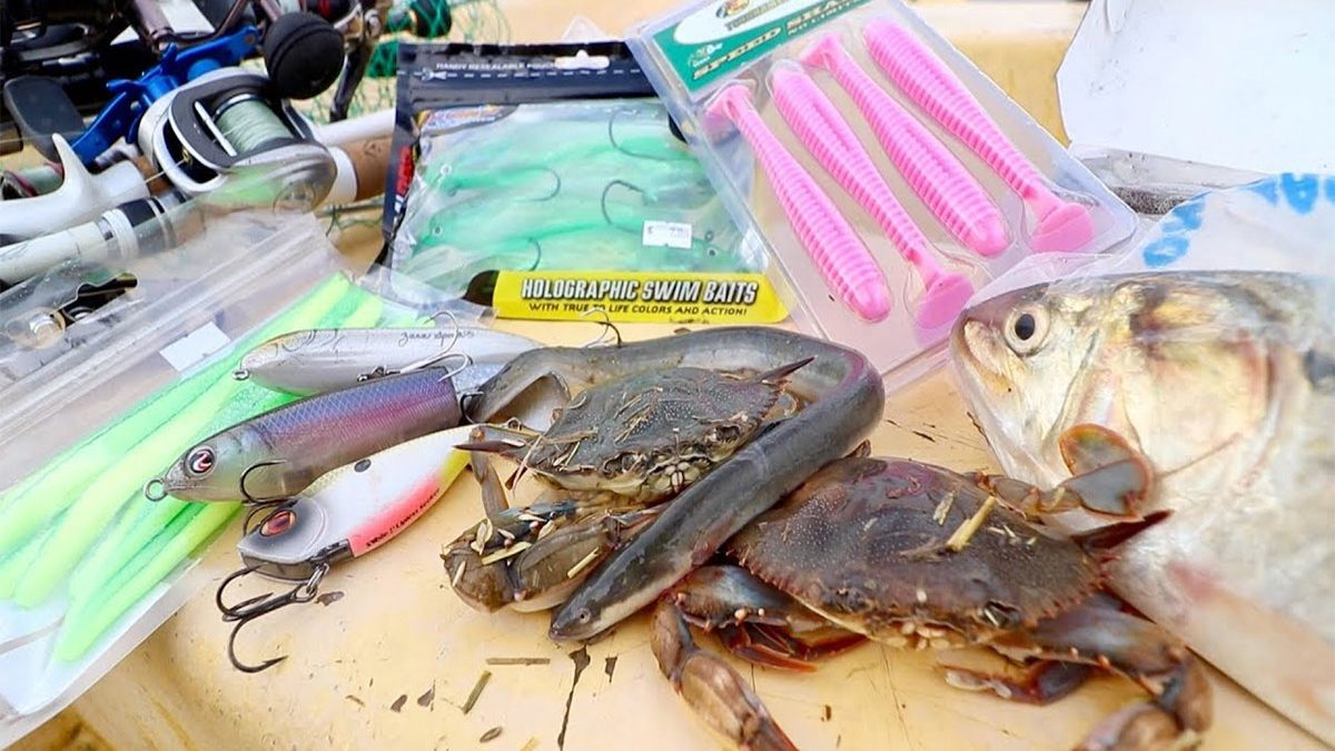Live bait & artificial luresfor fishing in East Africa