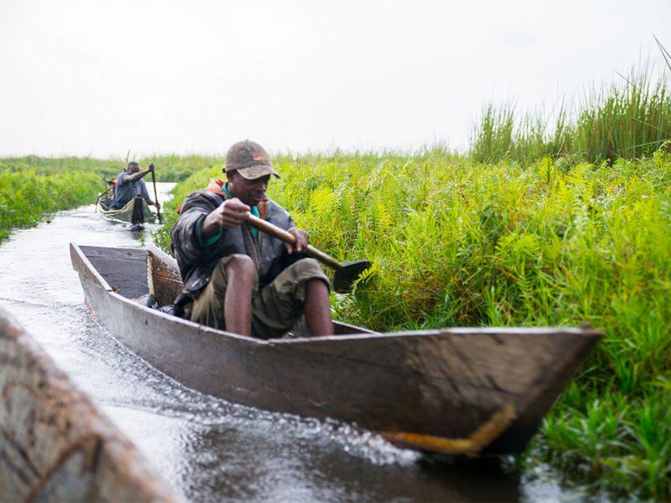 Mabamba swamp in Uganda
