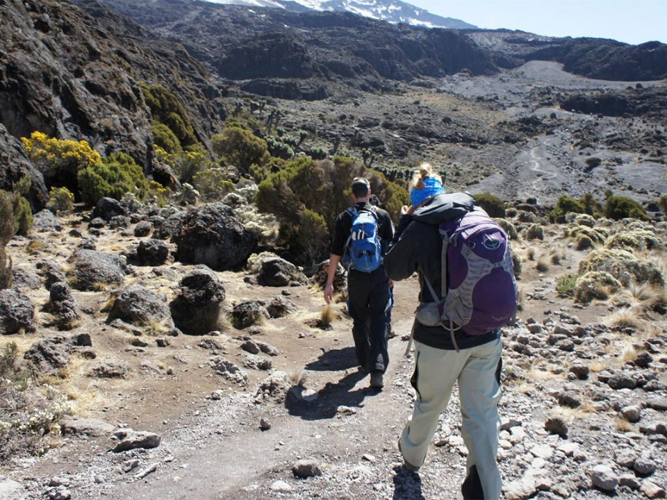 Mountain trekking and hiking safaris in East Africa