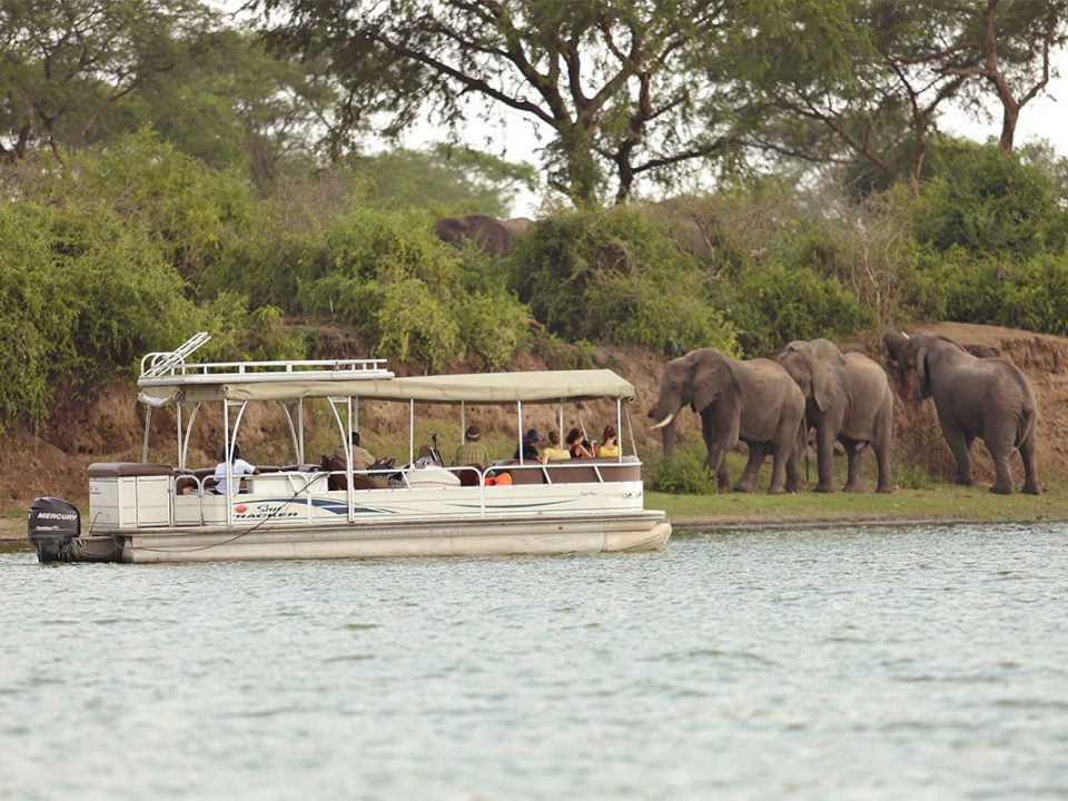 Mweya boat cruise on the Kazinga channel