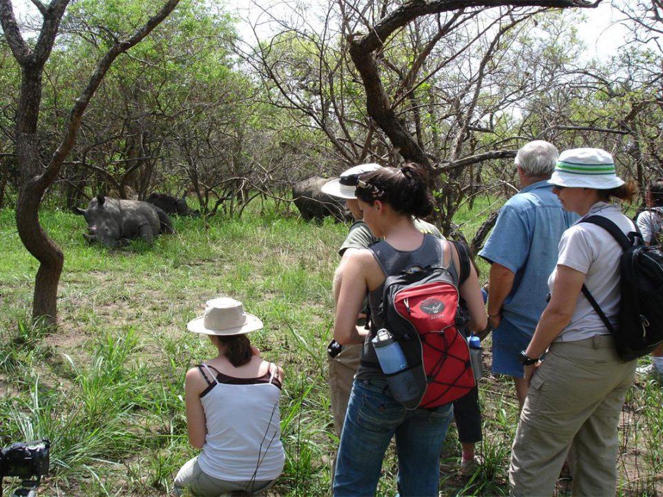 Top Rhino tracking safari in Uganda