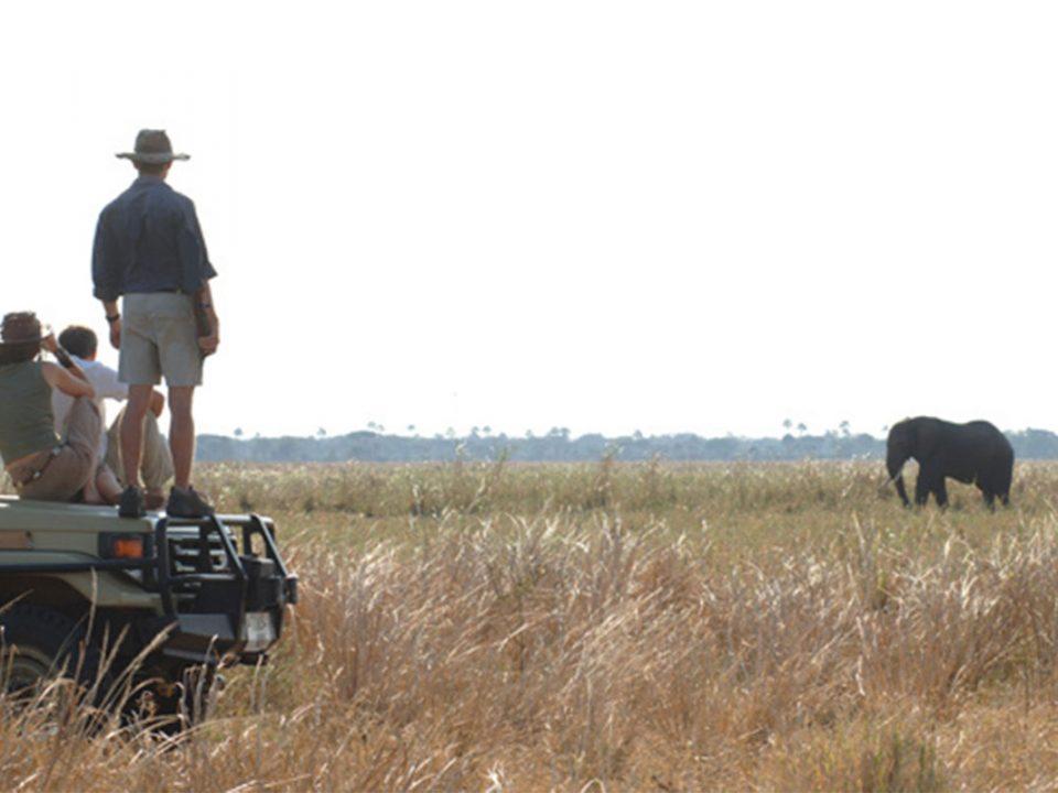 Safari tours to Katavi National Park Tanzania