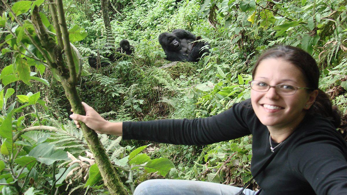 Top gorilla trekking locations in East Africa