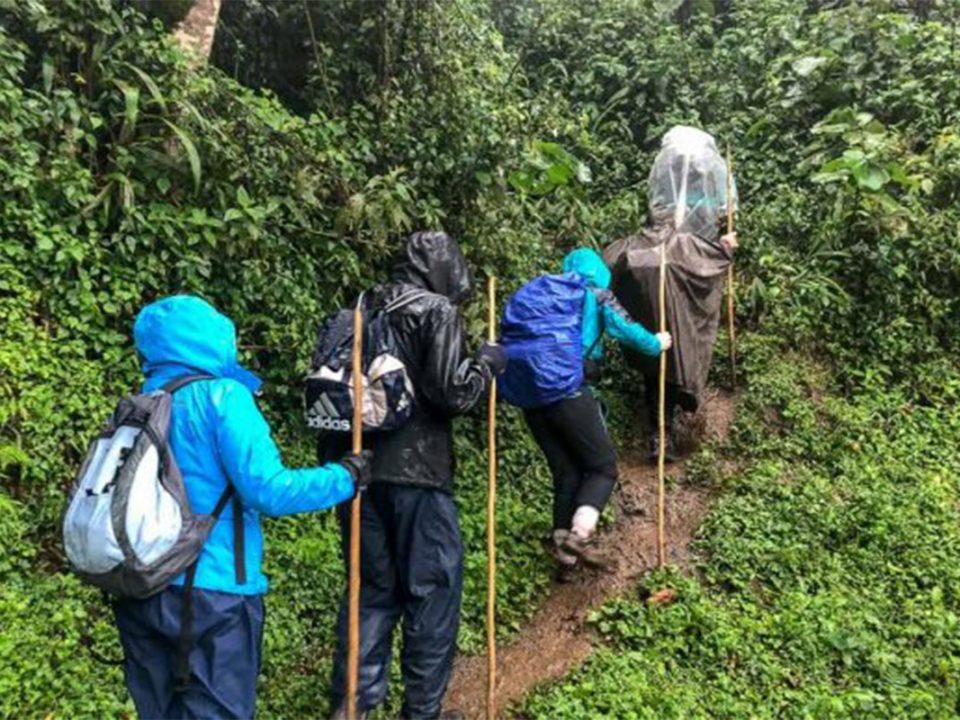 Uganda safari in April