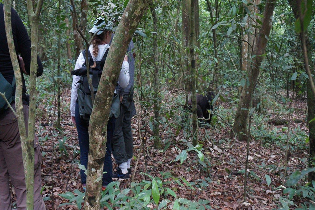 Uganda adventure tarvel holidays
