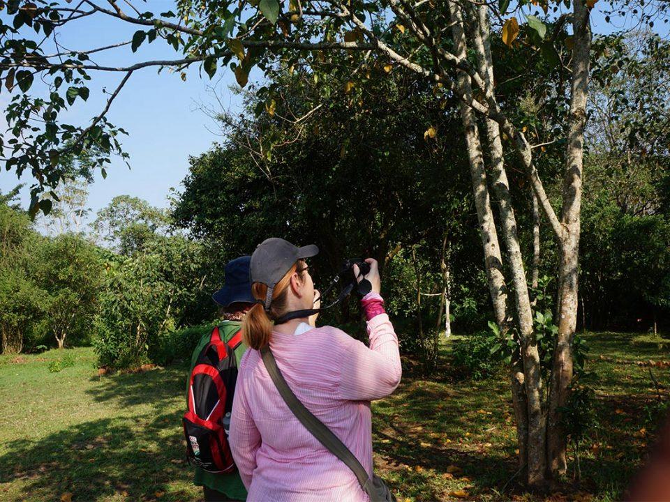 Uganda safari & adventure holidays
