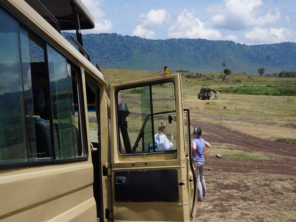 Uganda safaris & adventure options