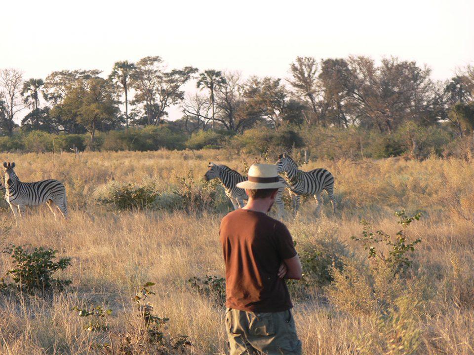 Uganda walking safaris