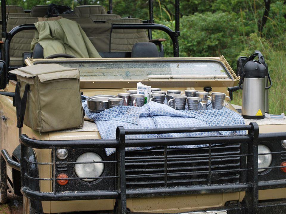 Safari tours to Kafue National Park