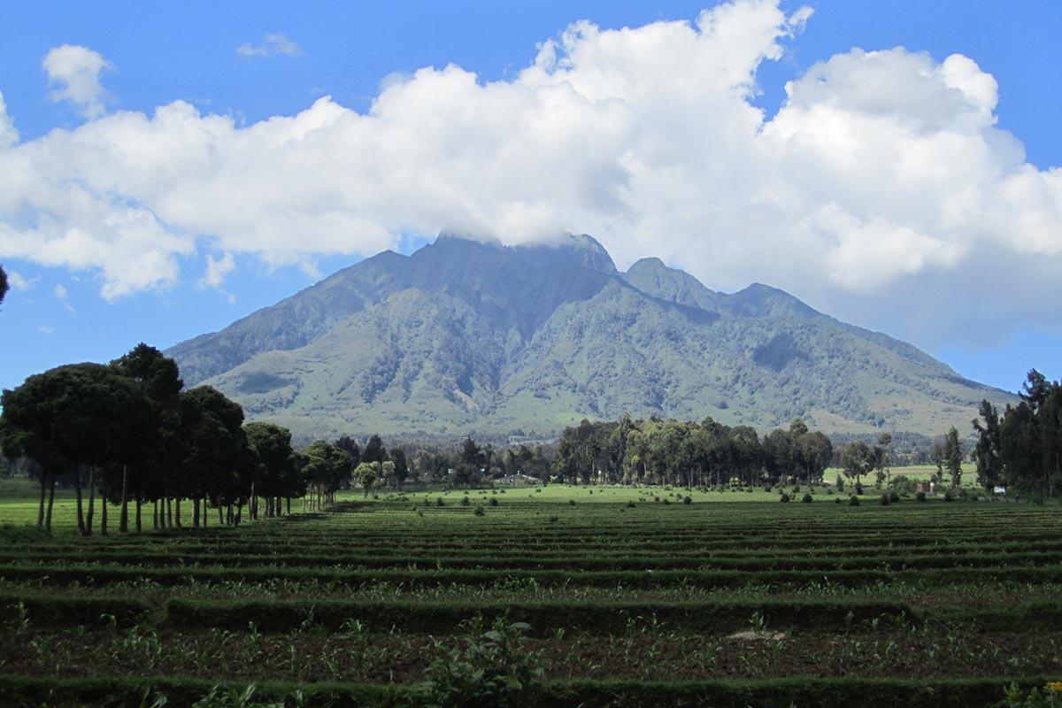 volcanoes-np